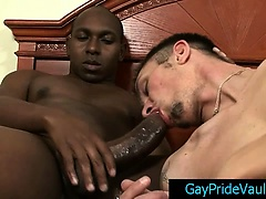 Thug getting his massive dick sucked long and hard gaypridevault