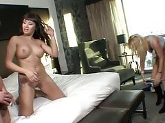 Carla Cox Esmeralda Rose